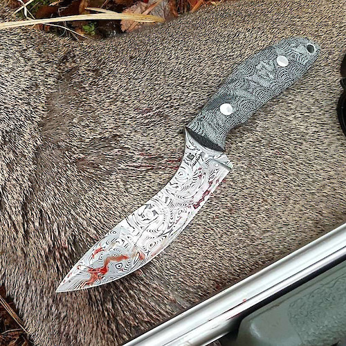 Evo Model in Damasteel does the business on a roe deer.